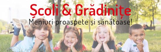 Școli și grădinițe (1)